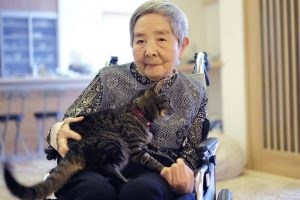 Japanese older lady seated with cat