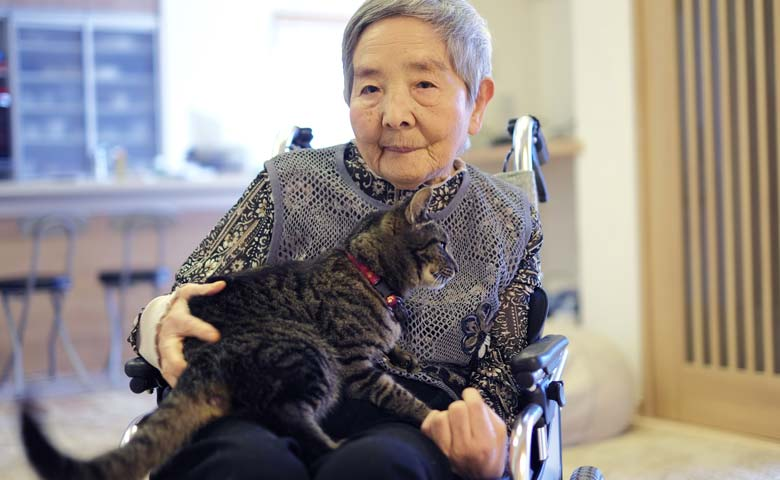 Japanese older lady with cat